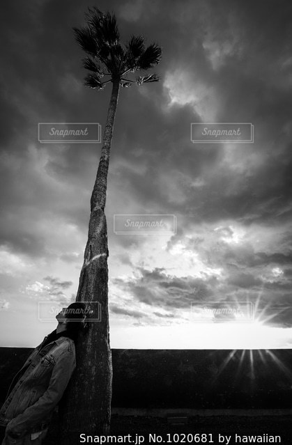 sunset boyの写真・画像素材[1020681]