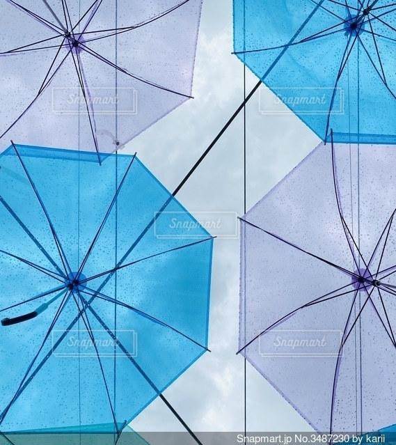 傘の写真・画像素材[3487230]