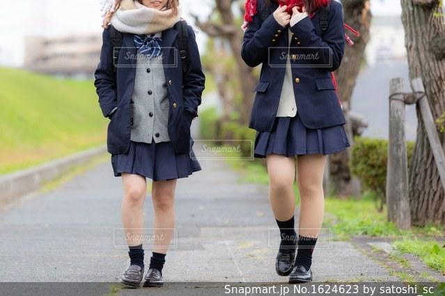 友達同士でおしゃべりしながら歩く高校生の写真・画像素材[1624623]