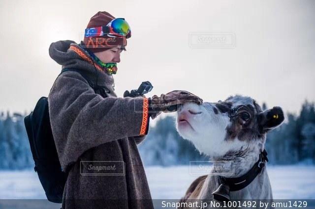 犬の横に立っている人の写真・画像素材[1001492]