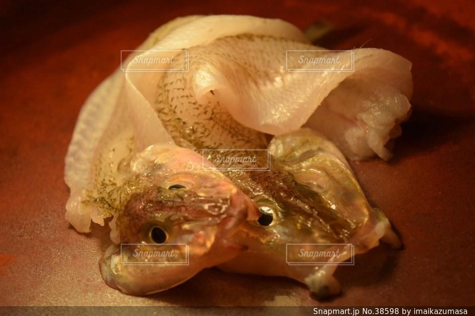 魚の写真・画像素材[38598]