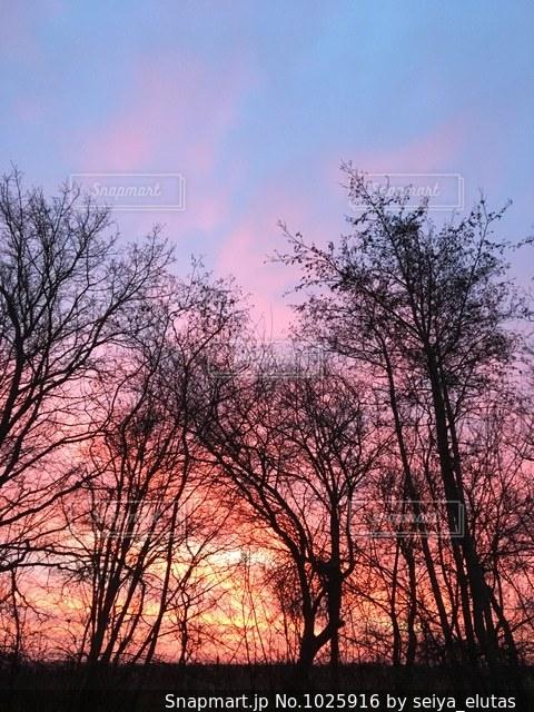 デンマークの朝焼けの写真・画像素材[1025916]