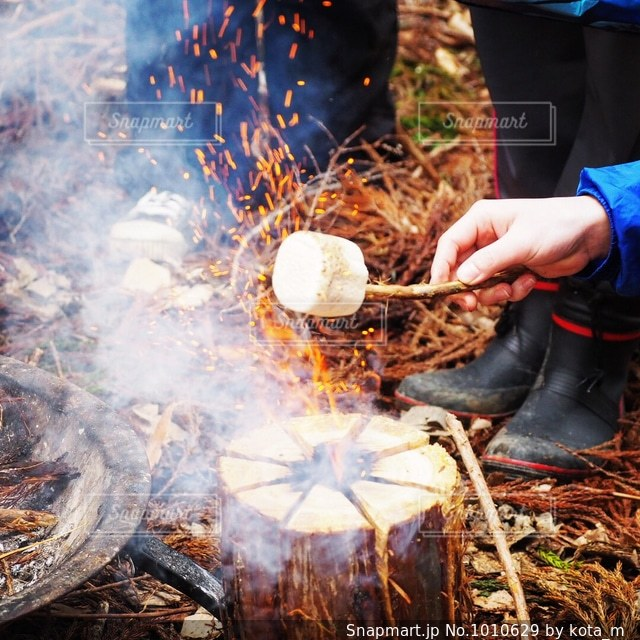 焚き火で焼きマシュマロの写真・画像素材[1010629]