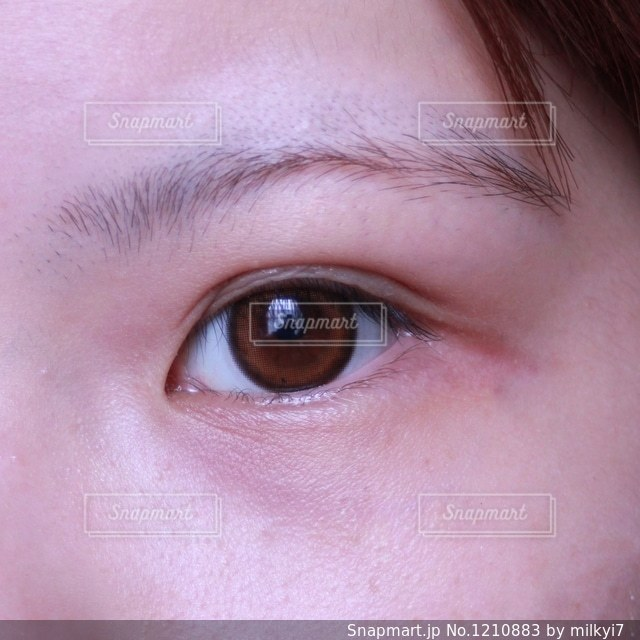 二重化粧品を使っている女性(目を開けている)の写真・画像素材[1210883]