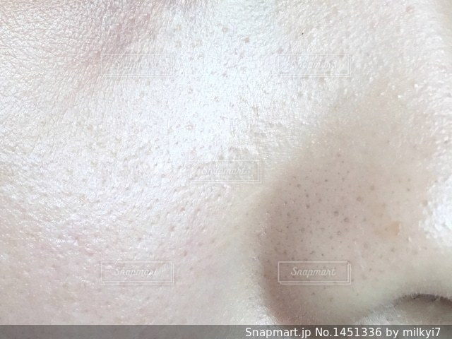 鼻の毛穴の写真・画像素材[1451336]
