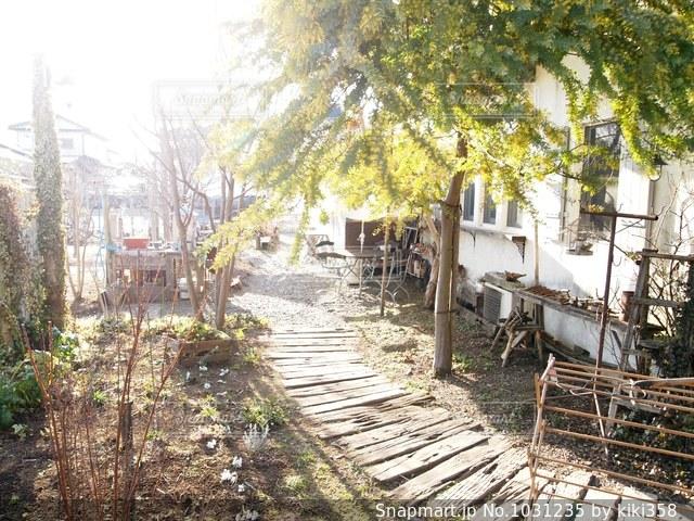 おしゃれな庭の写真・画像素材[1031235]