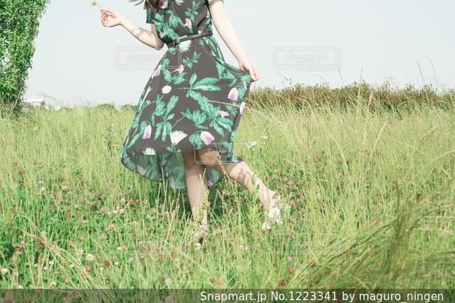 緑の草原の人の写真・画像素材[1223341]