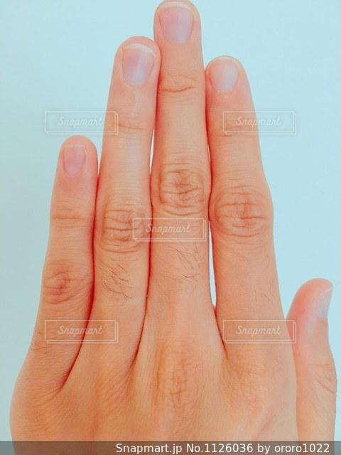 指のムダ毛の写真・画像素材[1126036]