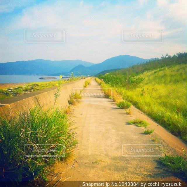 海の近くの一本道の写真・画像素材[1040884]