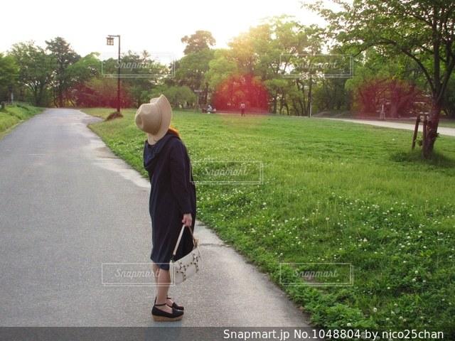 春の散歩道の写真・画像素材[1048804]