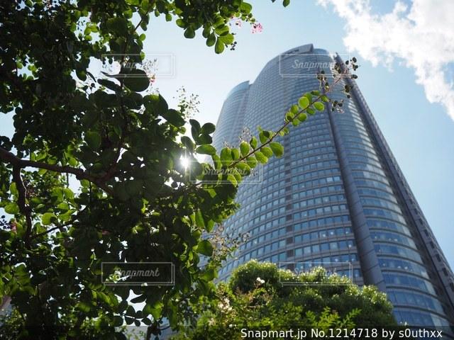 背の高い建物の写真・画像素材[1214718]