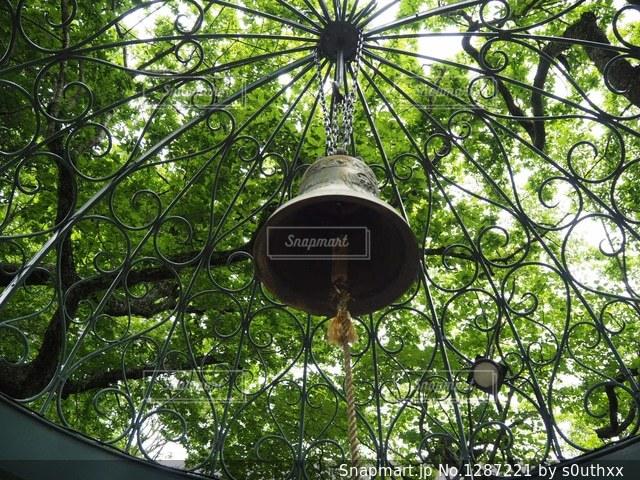 木からぶら下がっている時計の写真・画像素材[1287221]
