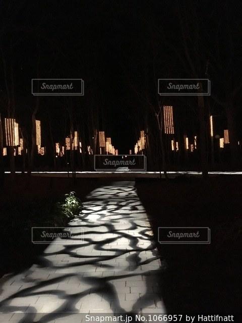 夜の軽井沢高原教会♡の写真・画像素材[1066957]