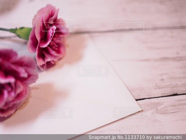 手紙と紫のカーネーションの写真・画像素材[1133710]