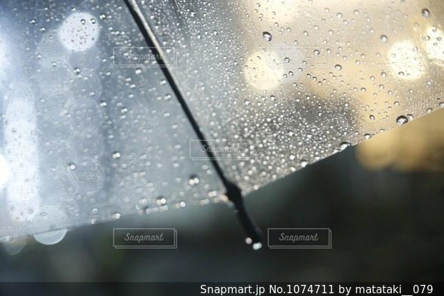 夜の雨の写真・画像素材[1074711]