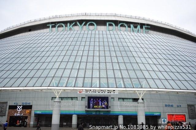 東京ドームの写真・画像素材[1081085]