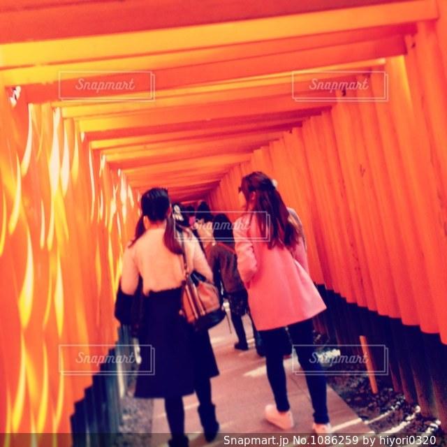 伏見稲荷の鳥居の写真・画像素材[1086259]