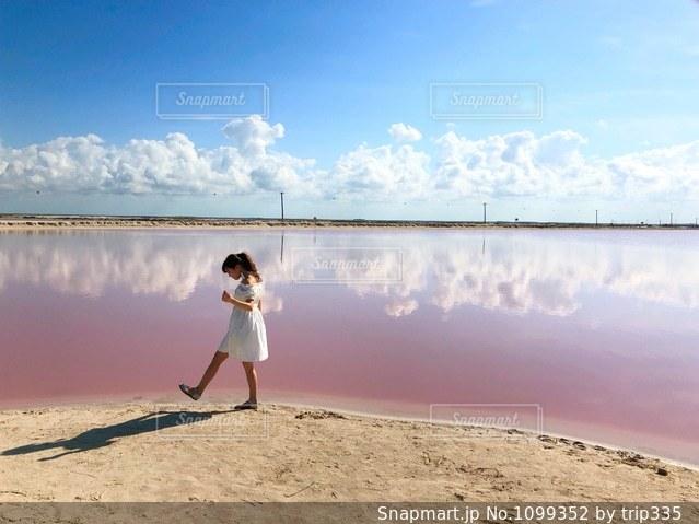 pink lakeの写真・画像素材[1099352]