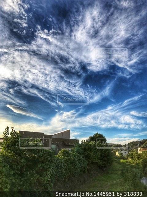 ある日の空の写真・画像素材[1445951]