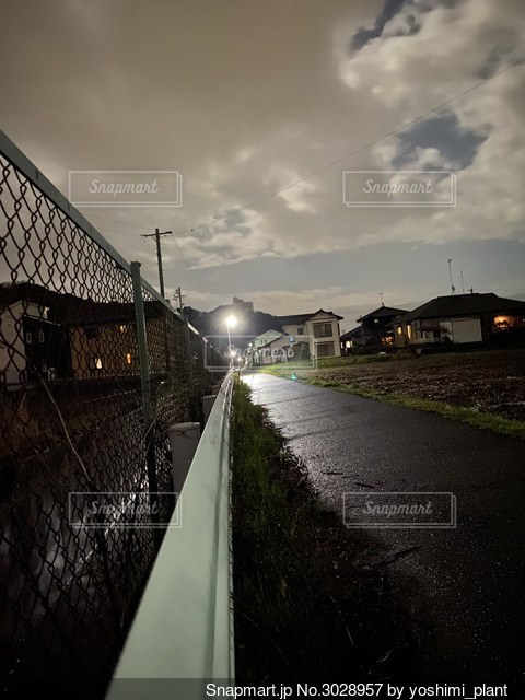 月夜の散歩道の写真・画像素材[3028957]