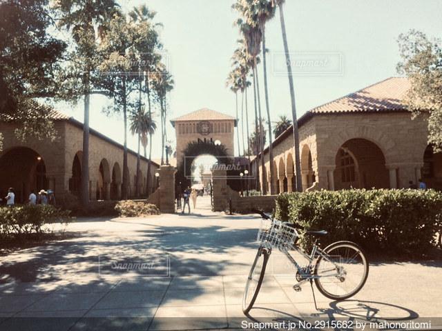 スタンフォード大学図書館前の写真・画像素材[2915662]