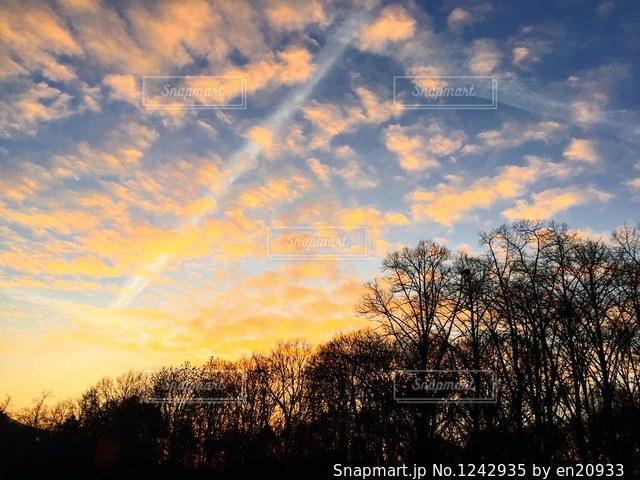 ドイツ_ベルリン_公園039の写真・画像素材[1242935]