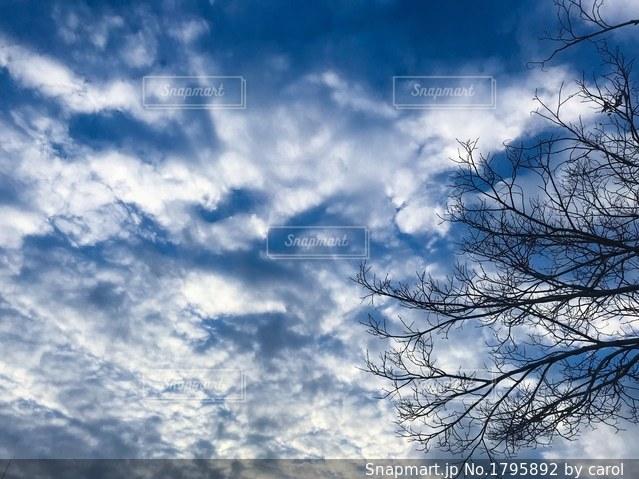 冬の青空と雲の写真・画像素材[1795892]