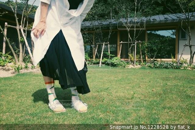 芝生の上の写真・画像素材[1228528]