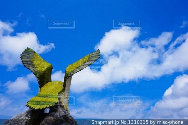 青い空と雲とツリーの写真・画像素材[1310315]