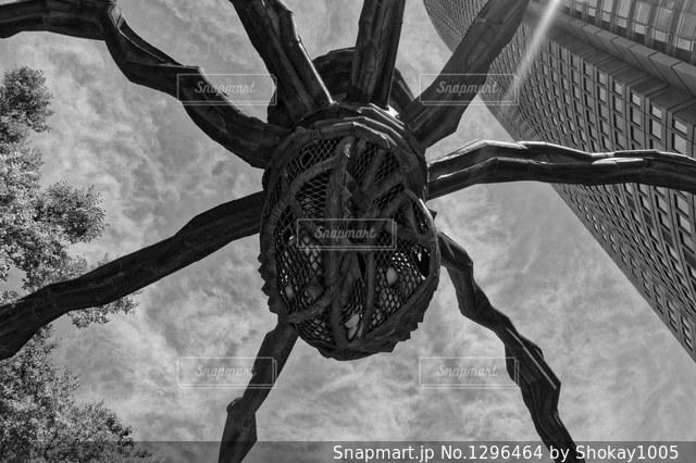 六本木ヒルズの巨大な蜘蛛オブジェ。の写真・画像素材[1296464]