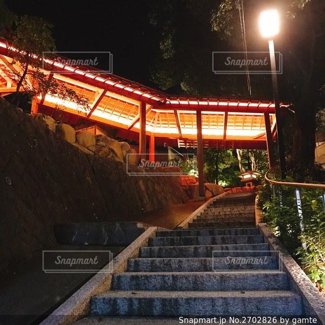 夜の散歩の写真・画像素材[2702826]