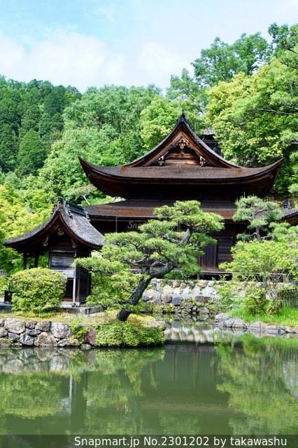 虎渓山永保寺の春の写真・画像素材[2301202]