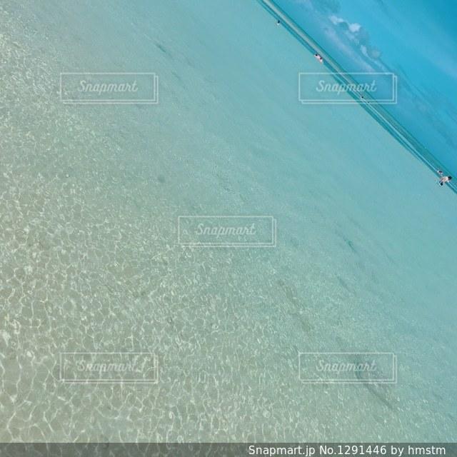 海の水面の写真・画像素材[1291446]