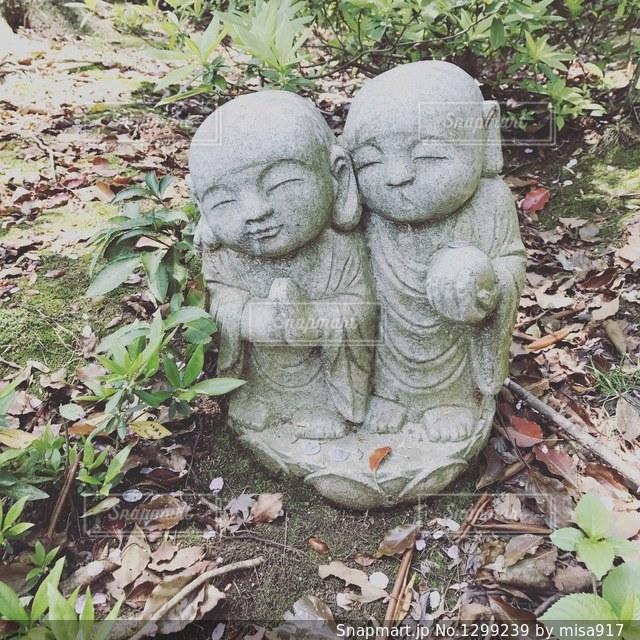 庭の動物のぬいぐるみの写真・画像素材[1299239]