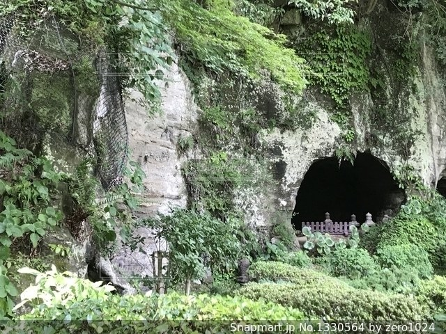 森の中の穴の写真・画像素材[1330564]