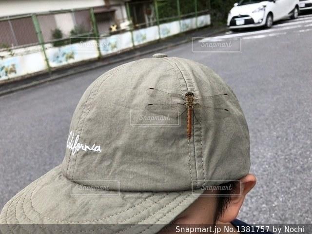 帽子にトンボの写真・画像素材[1381757]