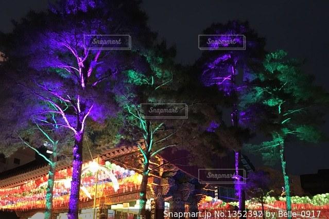 韓国ライトアップされた曹渓寺の写真・画像素材[1352392]