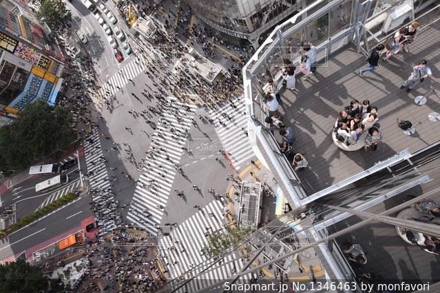 新スポットからの眺めの写真・画像素材[1346463]