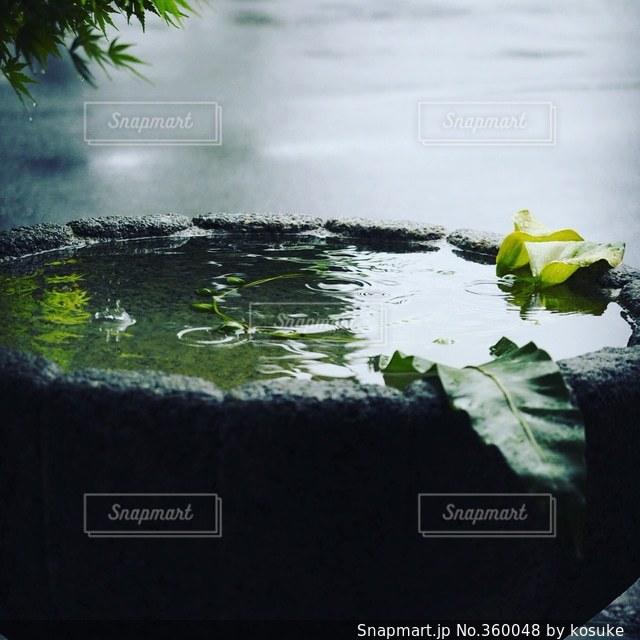 雨,京都,悪天候,雨水,雨空