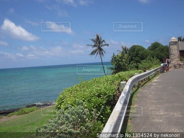 ラニカイビーチへ   モクルア・ドライブの写真・画像素材[1354524]