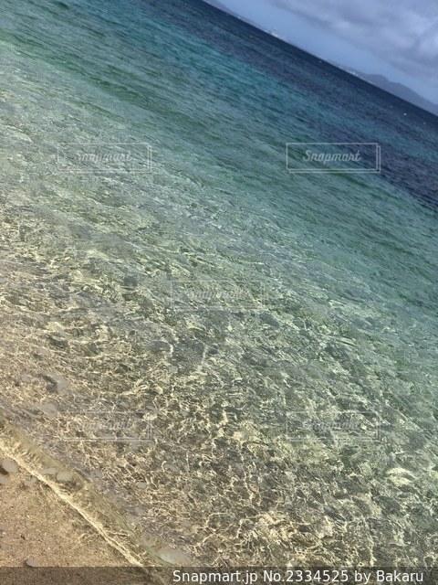 Beach Lifeの写真・画像素材[2334525]