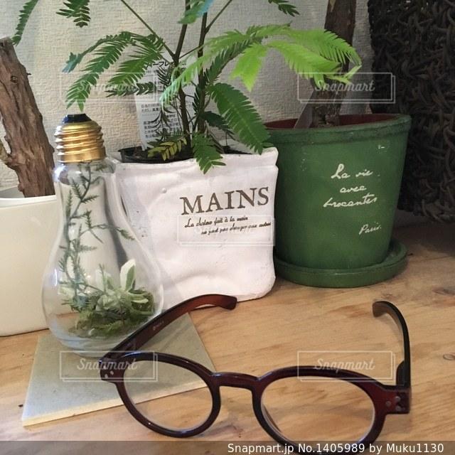 眼鏡と植物の写真・画像素材[1405989]
