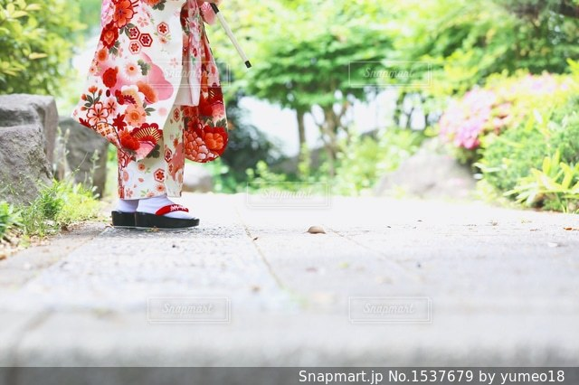 七五三の着物姿の足元の写真・画像素材[1537679]