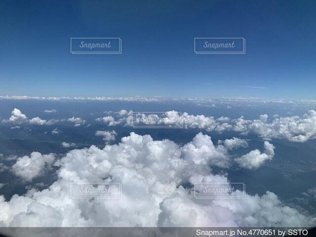 どこまで飛べるの写真・画像素材[4770651]