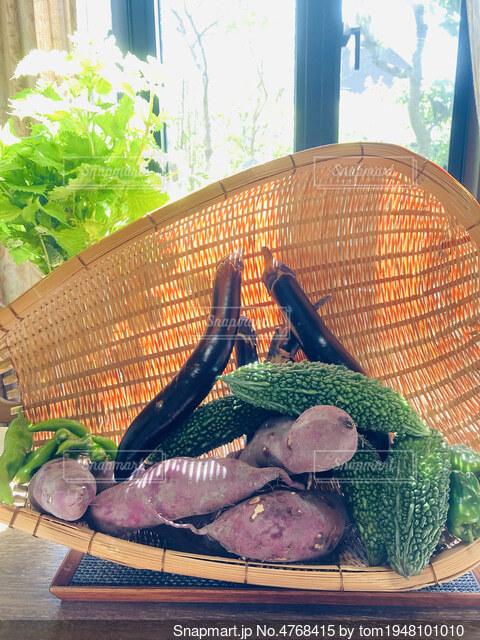 頂きものの夏野菜の写真・画像素材[4768415]