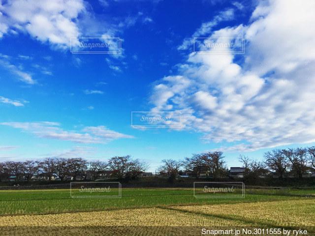 秋の空の写真・画像素材[3011555]