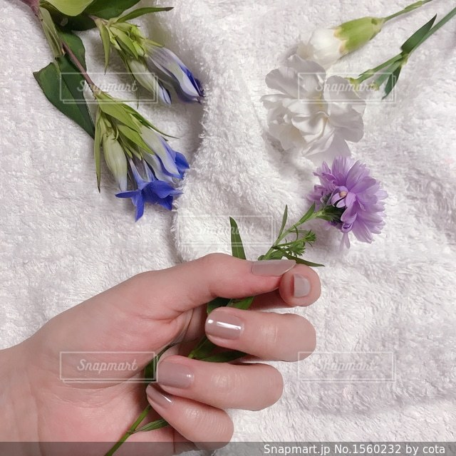 花を持っている手の写真・画像素材[1560232]