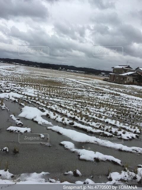 冬の田んぼの写真・画像素材[4770500]