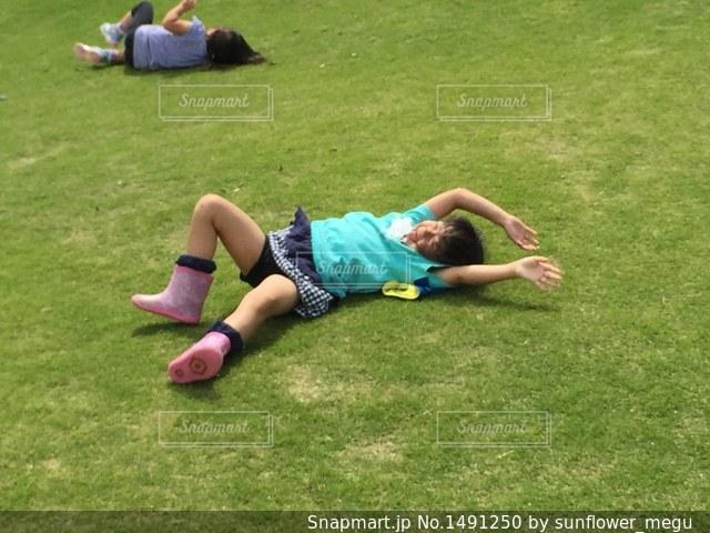 草の上を転がる女の子の写真・画像素材[1491250]