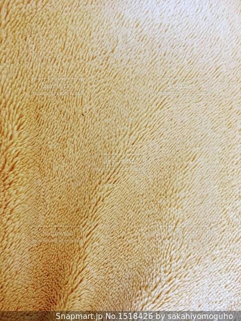 黄色い毛布の写真・画像素材[1518426]